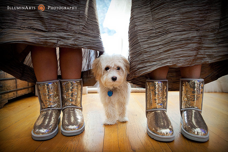 sequin ugg boots and puppy at outdoor winter wedding