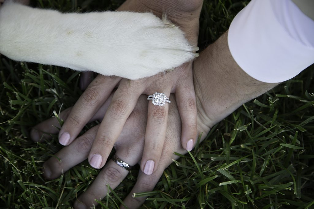 bride and groom hands and dog paw engagement ring