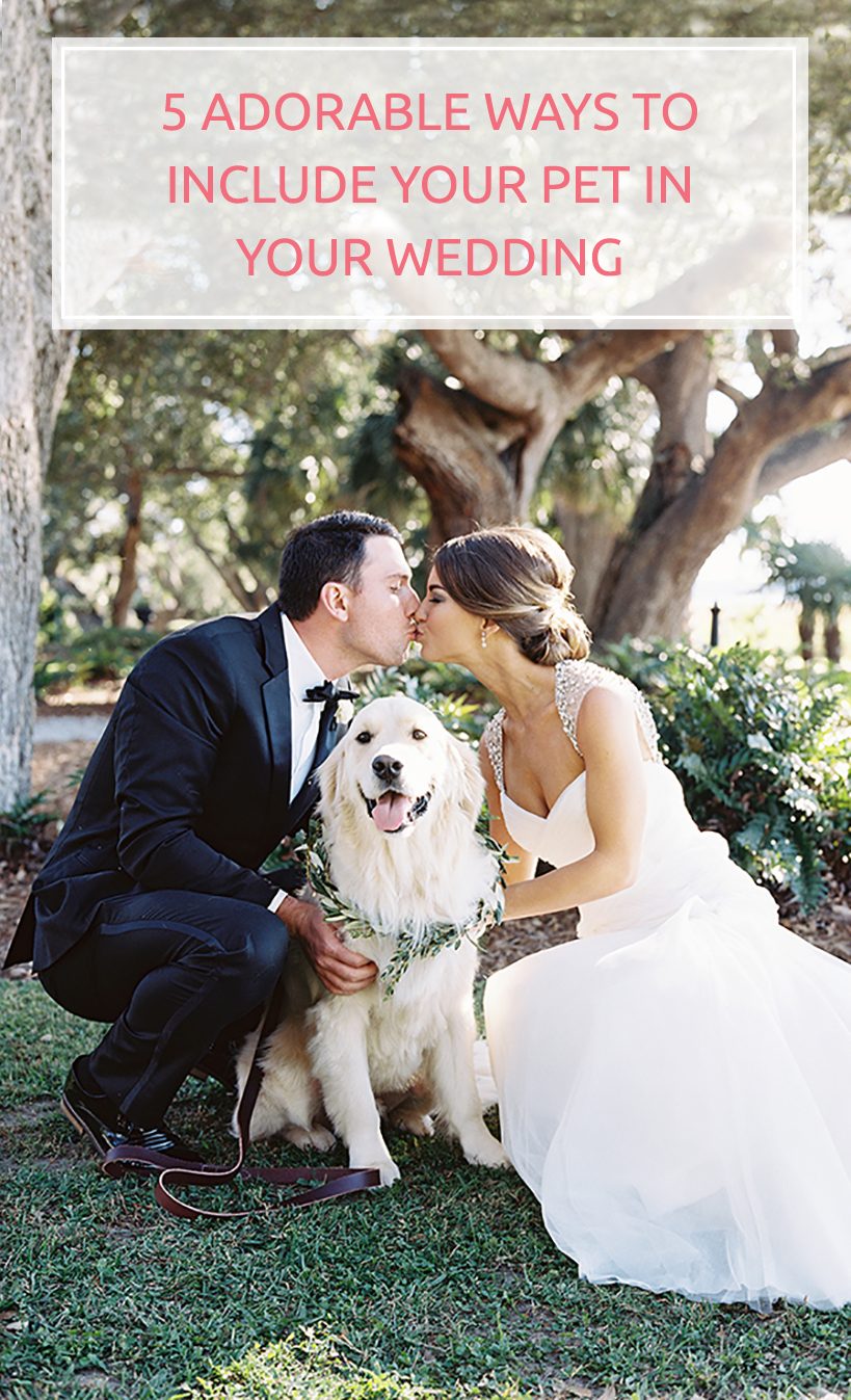 5 Adorable Ways to Include your Pet in your Wedding - BridalPulse